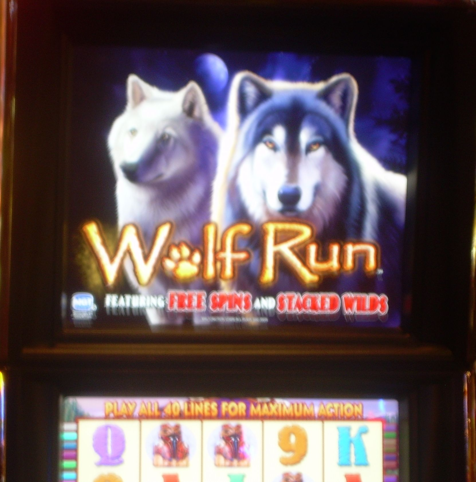 The White Wolf Slot - Play Online & Win Real Money